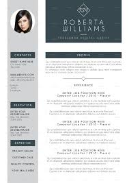 Professional Resume CV Indesign Template
