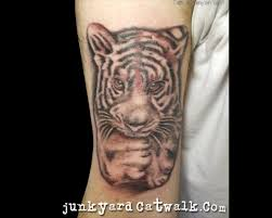 47 Tatuaggi Con Disegni Di Tigri