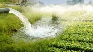 To Which Type Of Crops Sprinkler Irrigation System Best Suits
