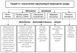 Жибинова К В Экономические основы экологии Тема 3 1 Экономическая оценка ущербов причиняемых загрязнением окружающей среды