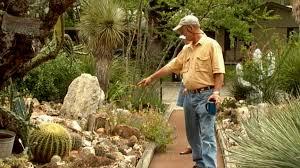 Small Picture Blog Central Texas Gardener