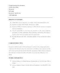 Profile On Resume Simple Profile Summary In Resume For Freshers Examples Qualifications
