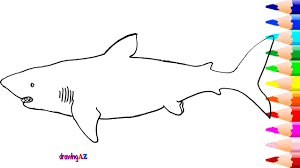 Small Picture Megalodon Drawing and Coloring Page and How to Draw Megalodon