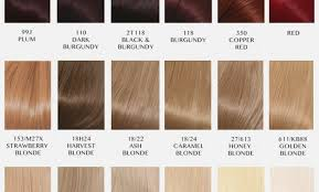 Surya Brasil Color Chart Surya Brasil Henna Cream Color Chart Elegant Surya Henna