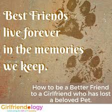 Loss Of A Pet Quote How to be Supportive when a Friend Loses a Pet 75