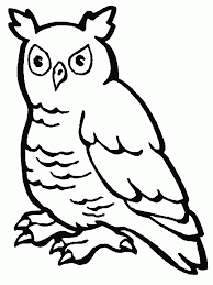 Small Picture Barn Owl Coloring Pages Coloring Home
