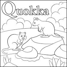 Small Picture Quokka Clip Art Vector Images Illustrations iStock