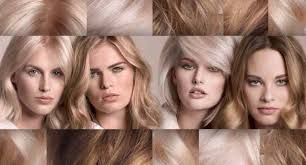 Goldwell Hair Color Chart 2014 Introducing The We Love Blonde Program By Goldwell Hair Care
