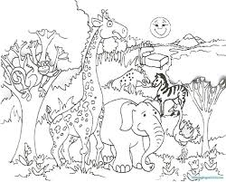 Safari Coloring Page Preschool Submited Images Pic 2 Fly Lily With