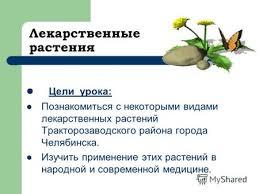 Презентация на тему Лекарственные растения Выполнил ученица  Лекарственные растения Цели урока Познакомиться с некоторыми видами лекарственных растений Тракторозаводского района города Челябинска