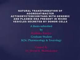 dissertation proposal presentation template dissertation proposal      Identity Cover Photo