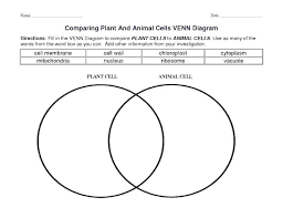 Venn Diagram Plants Labeling An Animal Cell Worksheet Luxury Plant Coloring Sheet With