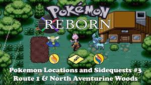 Pokemon Reborn Sidequests 3: Tyogue, Flabebe, Glaceon, Nyu's House, and Mega  Stones by Black117