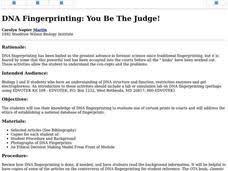 Dna Fingerprinting Lab Answers Dna Fingerprinting You Be The Judge Lesson Plan For 9th 12th