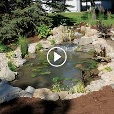 how to build pond pond building tips the pond guy
