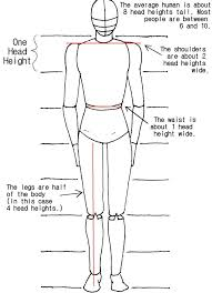 step by step worksheet how to draw the human body - Google Search ...