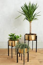 it house plant stand dolls unique decorative indoor outdoor stands made of wood metal iron