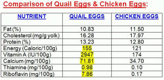 Chicken Egg Nutrition Chart Info And News Qeggalore Quail
