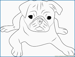 Pug Coloring Pages Admirably Cute Pug Face Coloring Page Free Dog