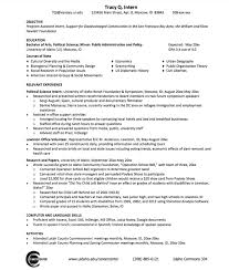 ... Fanciful Political Resume 10 Sample Political Science Resume ...