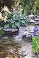Small Picture Welcome to Creative Landscapes Scotland Landscape Gardening with