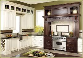 Prefab Kitchen Cabinets Rona Cabinet 50716 Home Design Ideas