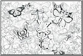 Flower And Butterfly Coloring Pages Coloring Pages Of Butterflies To