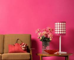 pink wall paintTransform Pink Wall Paint Amazing Furniture Home Design Ideas with