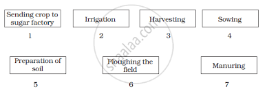 Sugar Production Flow Chart Arrange The Following Boxes In Proper Order To Make A Flow