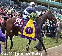2014 Breeders Cup Charts 2014 Breeders Cup World Championships Results