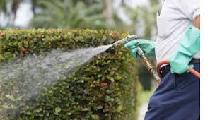 pest control carrollton tx. Delighful Carrollton Carrollton Pest Control For Pest Control Tx O