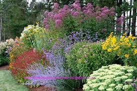 Small Picture Flower Garden Planner Expert Perennial Garden Design
