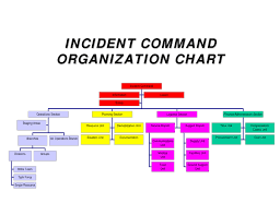 Command Structure Chart 20 Command Structure Diagram Pictures And Ideas On Weric