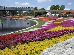 disney flower and garden. Disney Flower And Garden R