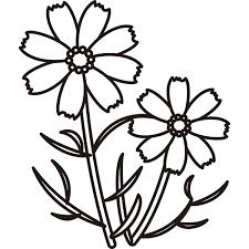 植物 コスモスモノクロ 無料イラストpowerpointテンプレート配布