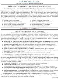 Sales Resume Examples Best Of 19 Best Resume S Amd Cv S Images On