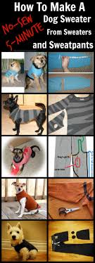 how to make no sew dog sweater from