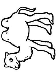 Small Picture Download Camel Coloring Pages bestcameronhighlandsapartmentcom
