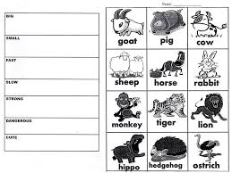Animal Adjectives Worksheet (Beginner ESL/EFL) - English Current
