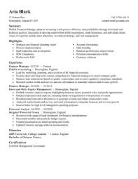 Sample Resume For Finance Manager Perfect Resume
