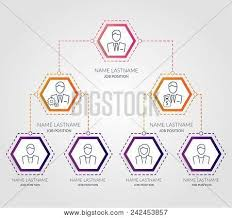 Business Hierarchy Vector Photo Free Trial Bigstock
