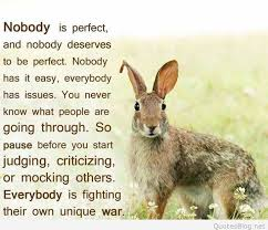 Image result for rabbits quotes