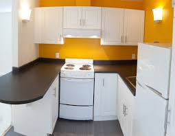 ... Delightful Images Of Kitchen Decoration Using Compact Kitchen Cabinet :  Excellent Small U Shape Kitchen Decoration ...