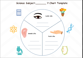 Y Chart Diagram Free Science Subject Y Chart Template
