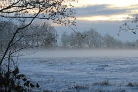 Картинки по запросу туман зимой