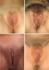 Anna Nude Gymnast Girls Naked Gymnastics Free Porn Pics