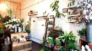 Modern Flower Shop Interior Design Flower Shop Design Ideas Flower Choices