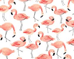 Flamingo Pattern Amazing Flamingo Party Seamless Pattern Graphic Patterns Creative Market