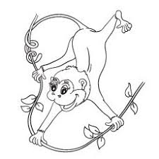 Small Picture Monkey coloring pages 3 Coloring Pages for Girls Pinterest