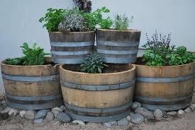 oak barrel planters half whiskey barrel planters oak wine barrel planter inspiring oak